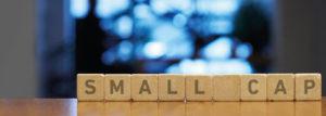 Small Cap funds – A kicker for your long-term portfolio